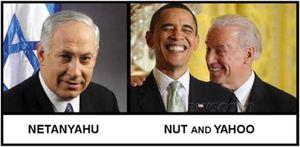 Nut and Yahoo